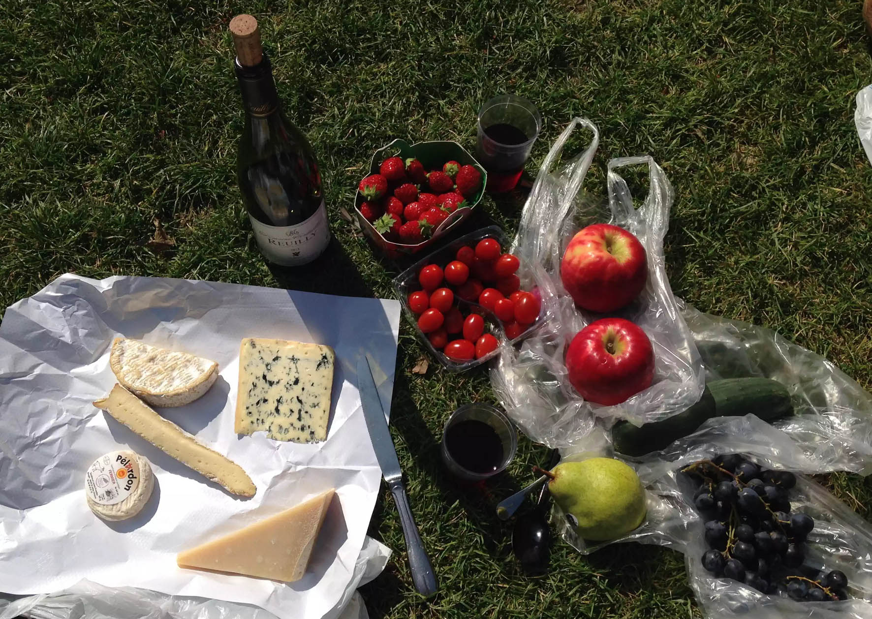 Picnic Park Paris Cheese Wine Fruit