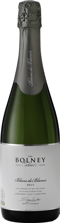 Bolney Wine Estate Sussex Tasting English Vineyard Valentines Sparkling Lunch Vines Grapes England Blanc de Blancs Chardonnay