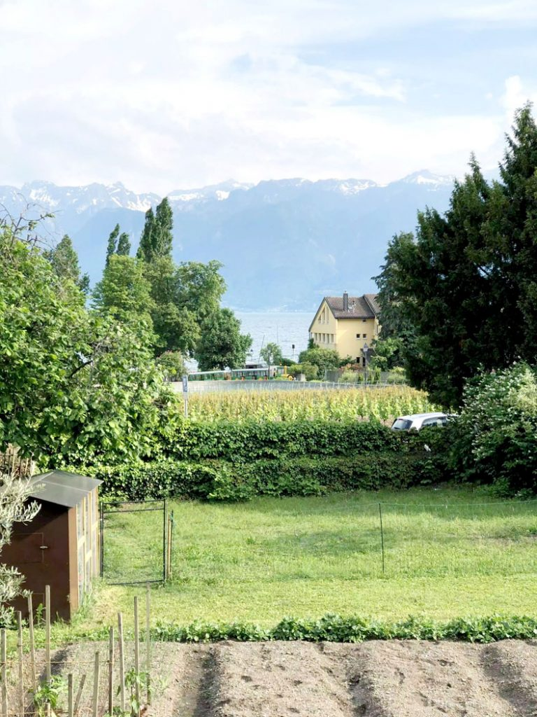 Les Caves Ouvertes de Vaud (The Open Cellars of Vaud) Wine Tasting in Lausanne Switzerland by Emma Eats & Explores